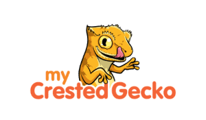 my crested gecko